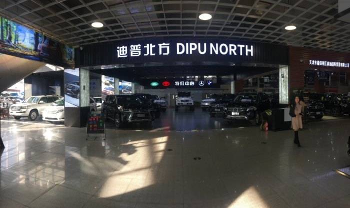 天津市迪普北方汽车贸易有限公司