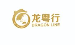 广州龙粤行汽车发展有限公司